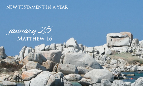 new-testament-in-a-year-january-25