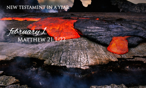 new-testament-in-a-year-february-1