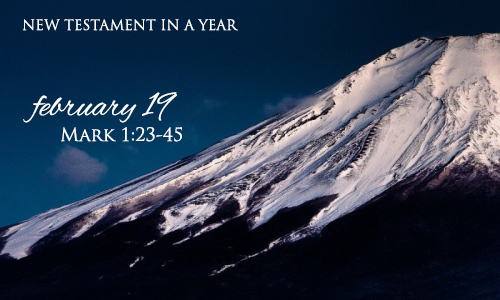 new-testament-in-a-year-february-19