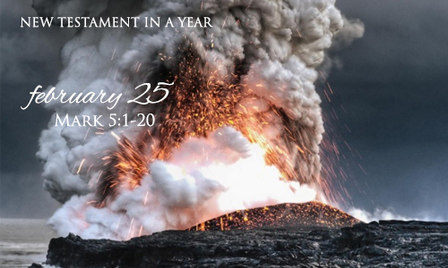 new-testament-in-a-year-february-25