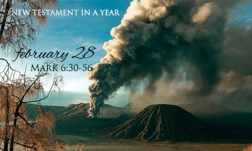 new-testament-in-a-year-february-28