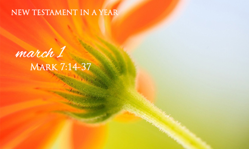 new-testament-in-a-year-march-1