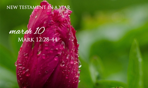 new-testament-in-a-year-march-10