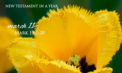 new-testament-in-a-year-march-11