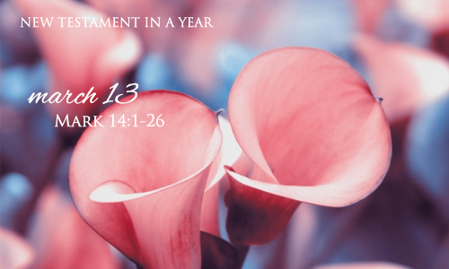 new-testament-in-a-year-march-13