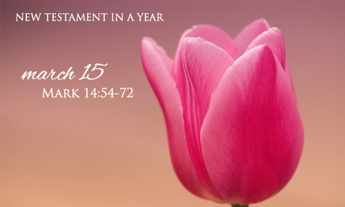 new-testament-in-a-year-march-15