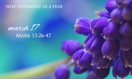 new-testament-in-a-year-march-17