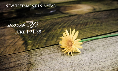 new-testament-in-a-year-march-20