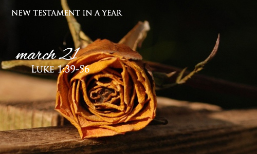 new-testament-in-a-year-march-21