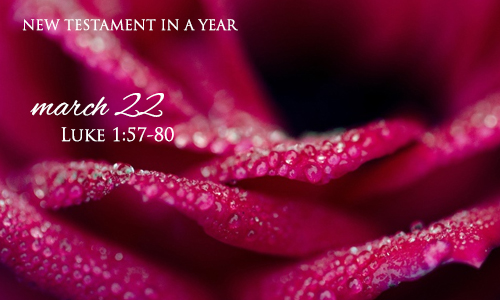 new-testament-in-a-year-march-22