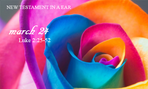 new-testament-in-a-year-march-24