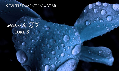 new-testament-in-a-year-march-25