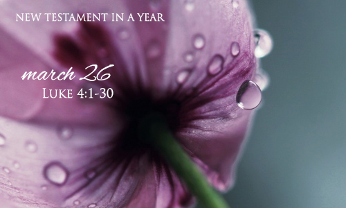 new-testament-in-a-year-march-26