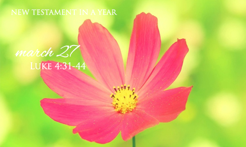 new-testament-in-a-year-march-27