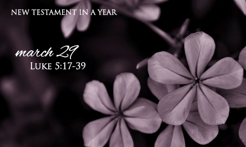 new-testament-in-a-year-march-29