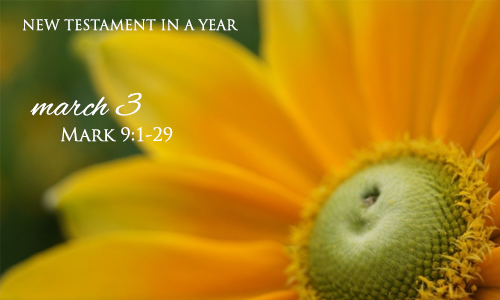 new-testament-in-a-year-march-3