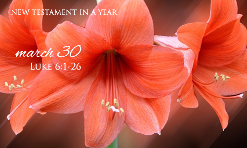 new-testament-in-a-year-march-30