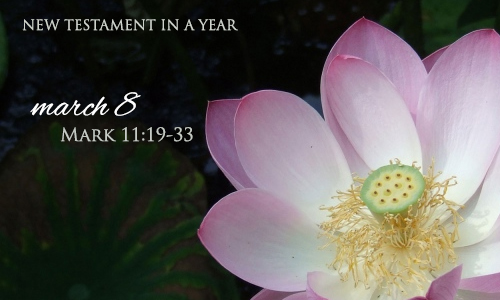 new-testament-in-a-year-march-8