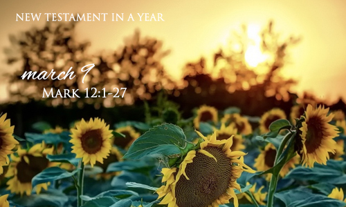 new-testament-in-a-year-march-9