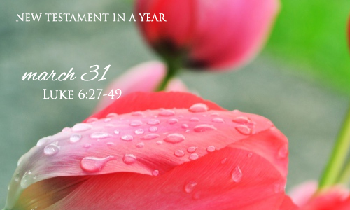 new-testament-in-a-year-march-31