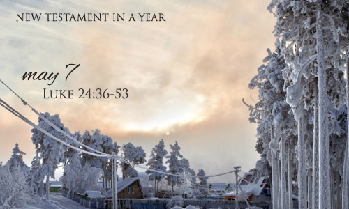 new-testament-in-a-year-may-7
