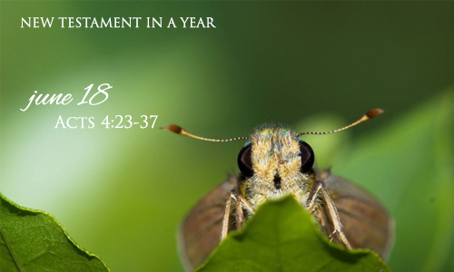 new-testament-in-a-year-june-18