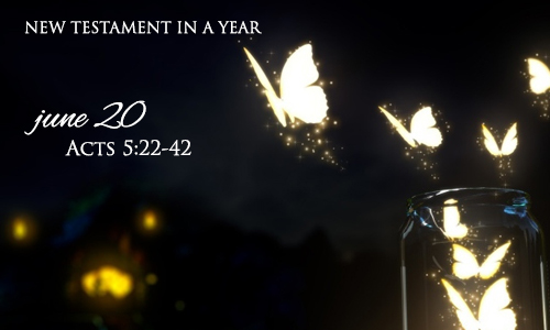 new-testament-in-a-year-june-20