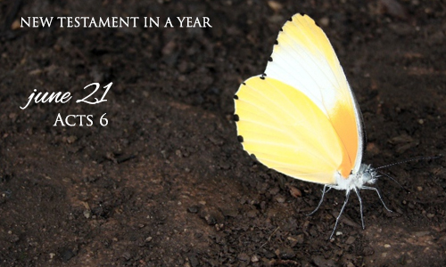 new-testament-in-a-year-june-21