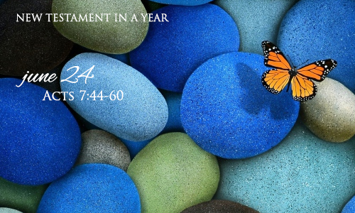 new-testament-in-a-year-june-24