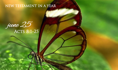 new-testament-in-a-year-june-25