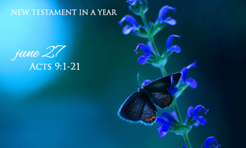 new-testament-in-a-year-june-27