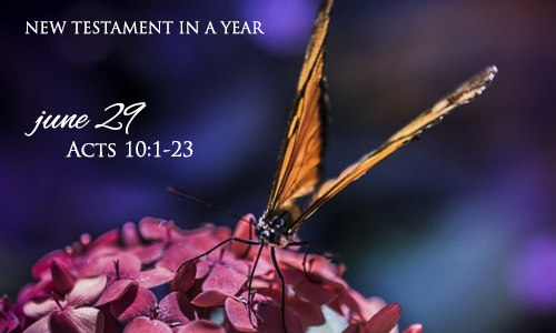 new-testament-in-a-year-june-29