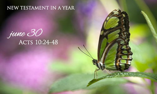 new-testament-in-a-year-june-30