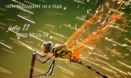 new-testament-in-a-year-july-11