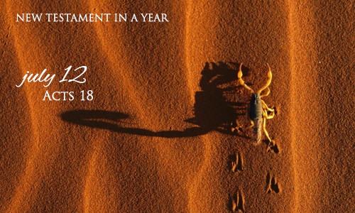new-testament-in-a-year-july-12