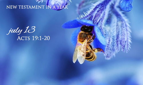 new-testament-in-a-year-july-13
