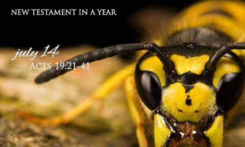 new-testament-in-a-year-july-14