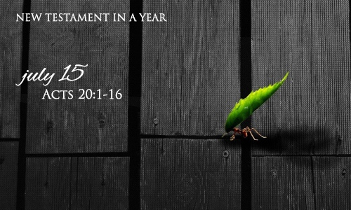 new-testament-in-a-year-july-15