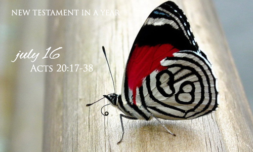 new-testament-in-a-year-july-16