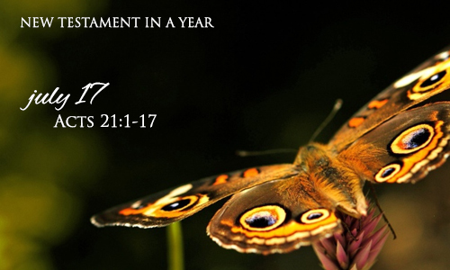 new-testament-in-a-year-july-17