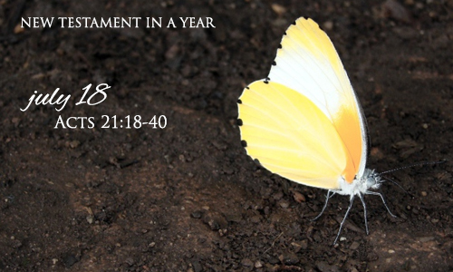 new-testament-in-a-year-july-18