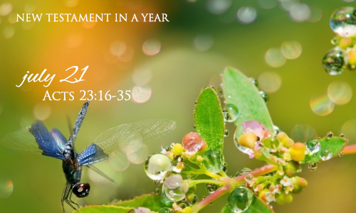 new-testament-in-a-year-july-21