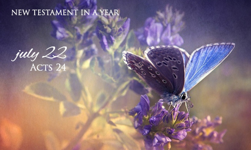 new-testament-in-a-year-july-22