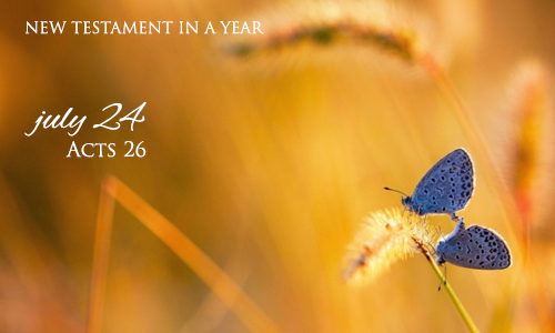 new-testament-in-a-year-july-24