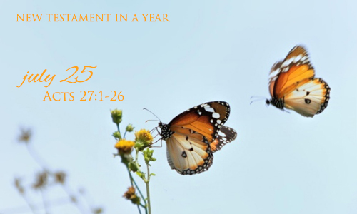 new-testament-in-a-year-july-25