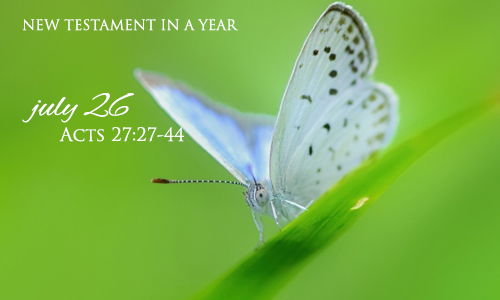 new-testament-in-a-year-july-26