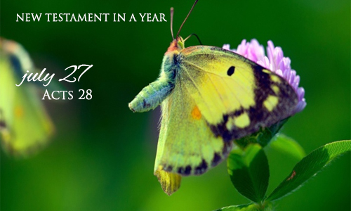 new-testament-in-a-year-july-27