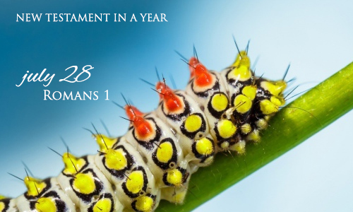 new-testament-in-a-year-july-28