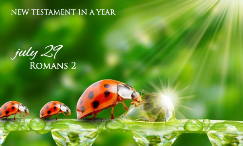 new-testament-in-a-year-july-29