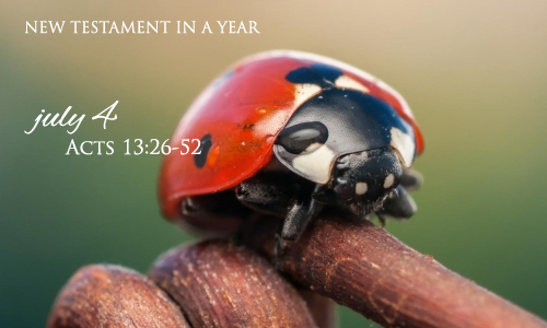 new-testament-in-a-year-july-4
